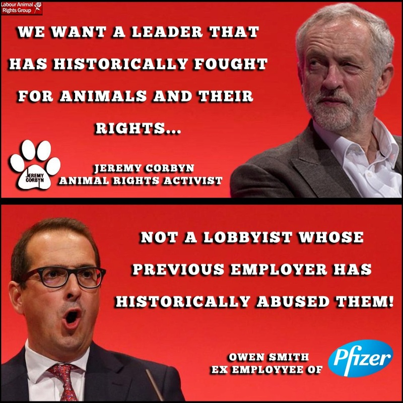 "Is Britain really ""a nation of animal lovers""? - Page 2 Corbyn14"