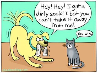 George Clooney is obsessed with fresh socks  - Page 3 Dirtys10