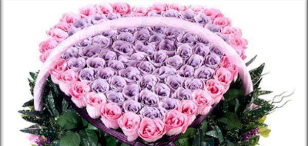 Beautiful Roses 54797710