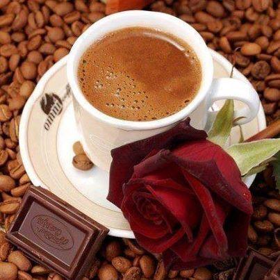 Beautiful Roses 57597210