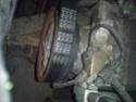 Sifflement suspect Dsc_3910