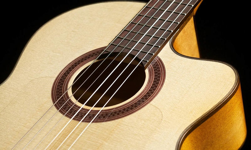 choix de guitare  110