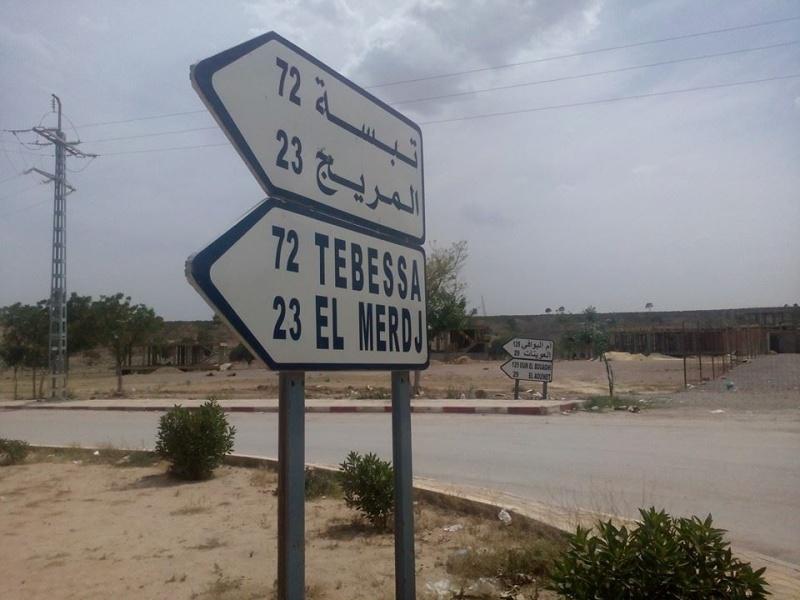 Hafit continue à sillonner les différentes localités de Tebessa avec son ami Mokhtar.(Juin 2016) 119