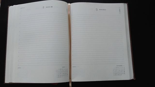 A la recherche de l'agenda parfait - Page 2 20160810