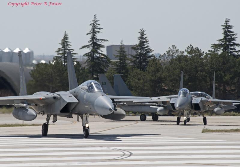 الموسوعه الفوغترافيه لصور القوات الجويه الملكيه السعوديه ( rsaf ) - صفحة 3 91393210