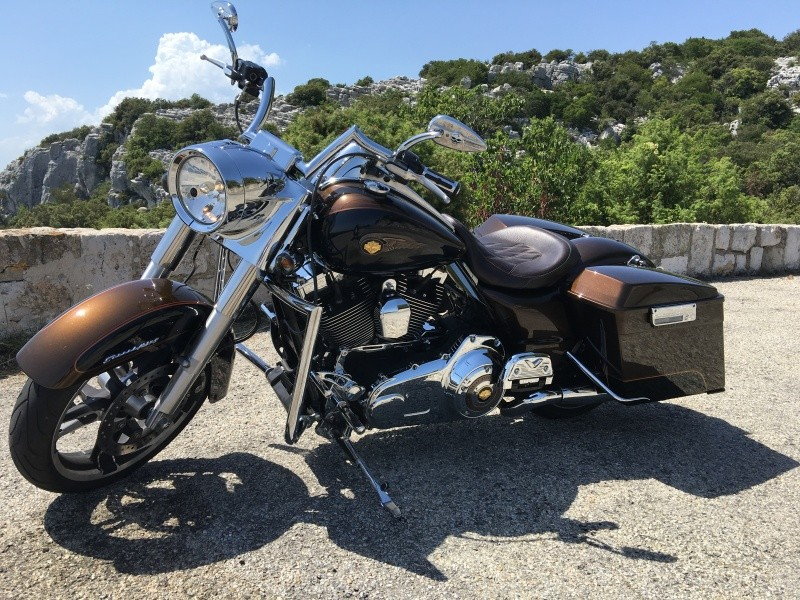 Du Fat au Road King... - Page 5 Img_0519