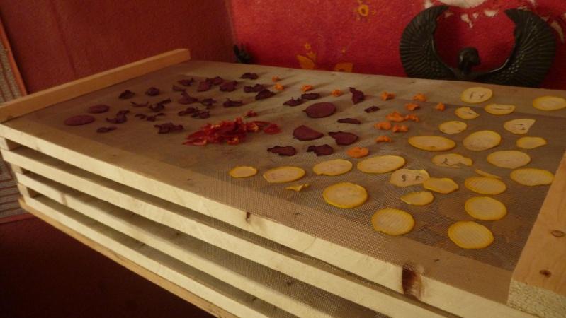 Déshydrater fruits et légumes.... P1090312