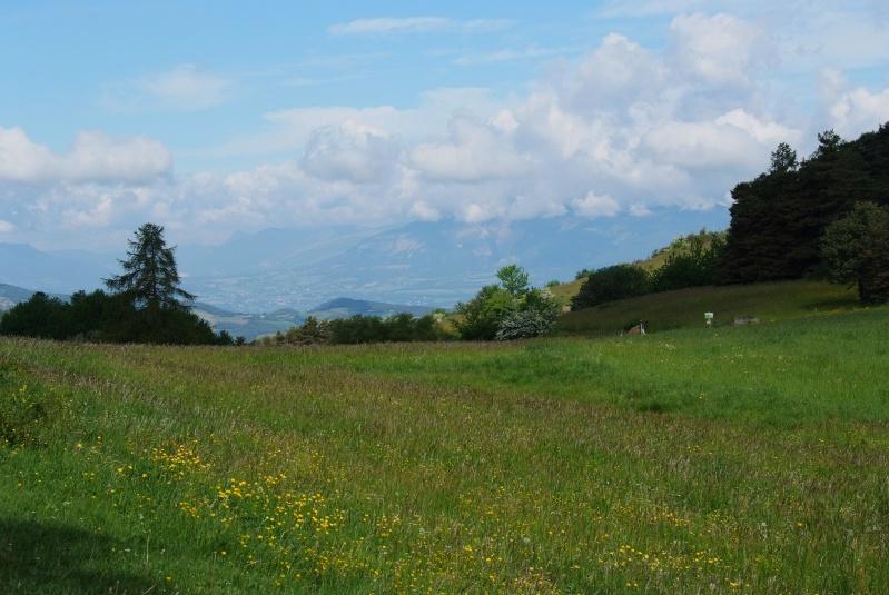 WE 11-12/06 balade petites-routes pistes sympa autour de serre ponçon - Page 3 Dscf6413