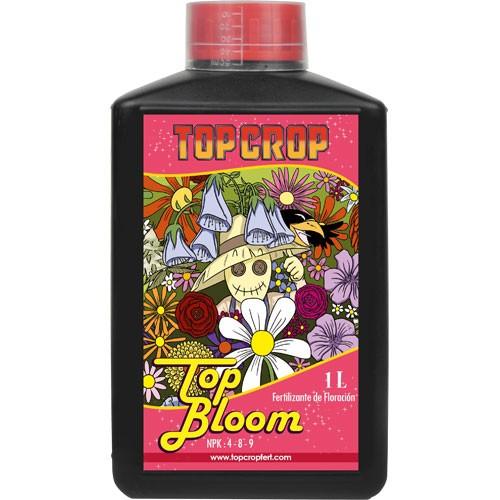 TOP CROP Top_bl10