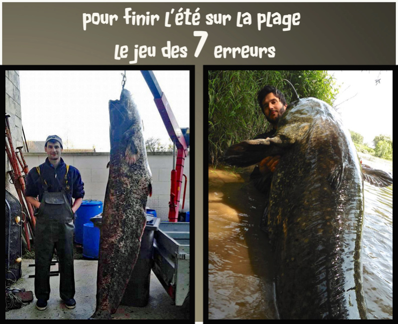 Mes interventions Facebook - Page 3 Le_jeu10