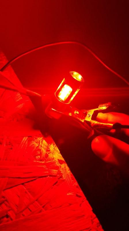 Ampoules clignos dual color 20160713