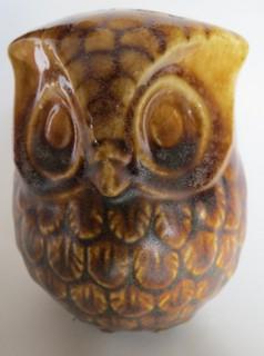 desperately cute Stewart owl for gallery  16-ste11