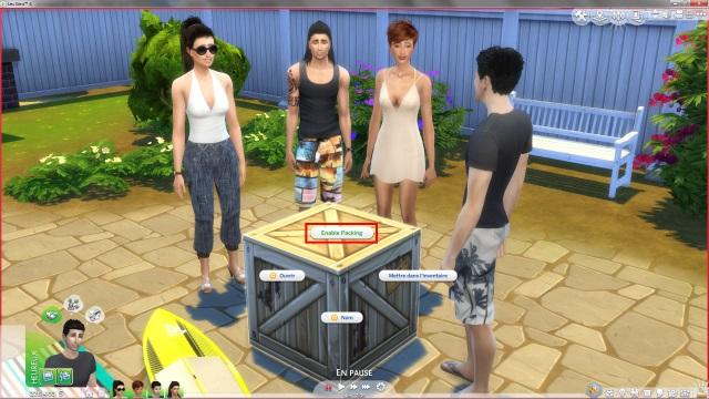 [Fiche] Emmener vos Sims et leur matériel à la plage grâce à trois mods: Beach mod, Life is a Beach Mod, Packing Crate Mod Image_15