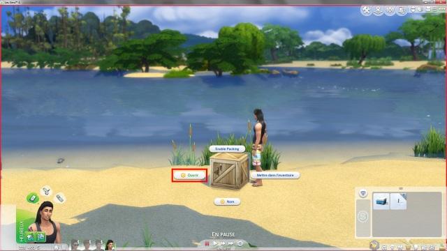 [Fiche] Emmener vos Sims et leur matériel à la plage grâce à trois mods: Beach mod, Life is a Beach Mod, Packing Crate Mod Image_22