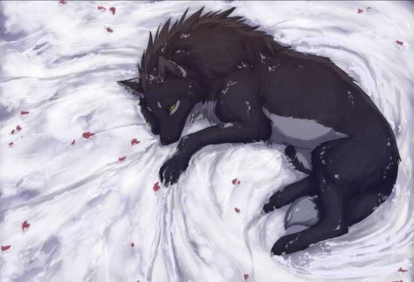seven days to the wolves - Adhara (En cours) Linka_12