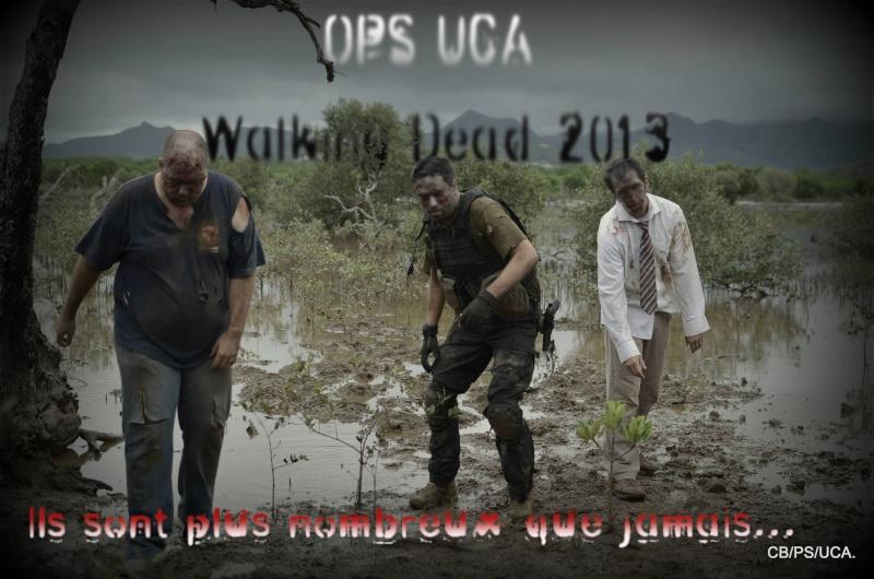 Walking dead 2013 Teaser11