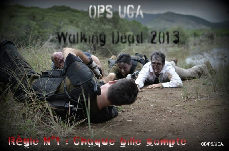 Walking dead 2013 Teaser13