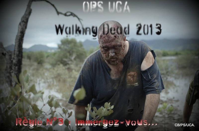 Walking dead 2013 Teaser15