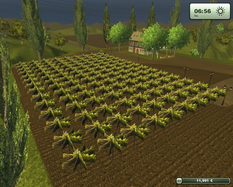 Azienda agricola spracello  Fsscre23