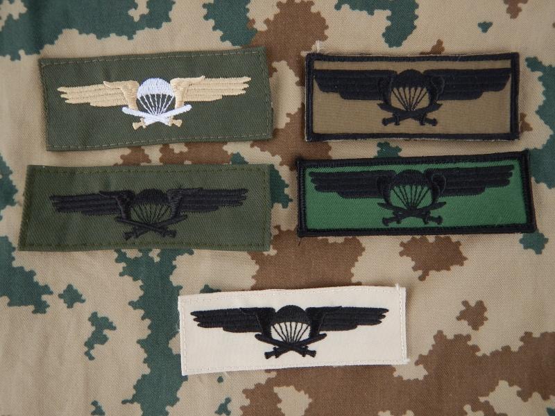 Finnish Para insignia Dscn4217