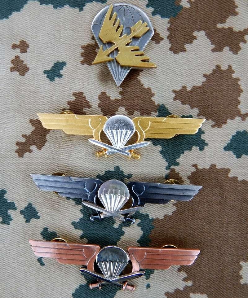 Finnish Para insignia Dscn4310