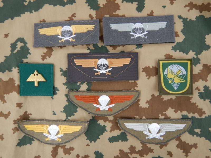 Finnish Para insignia Dscn4311