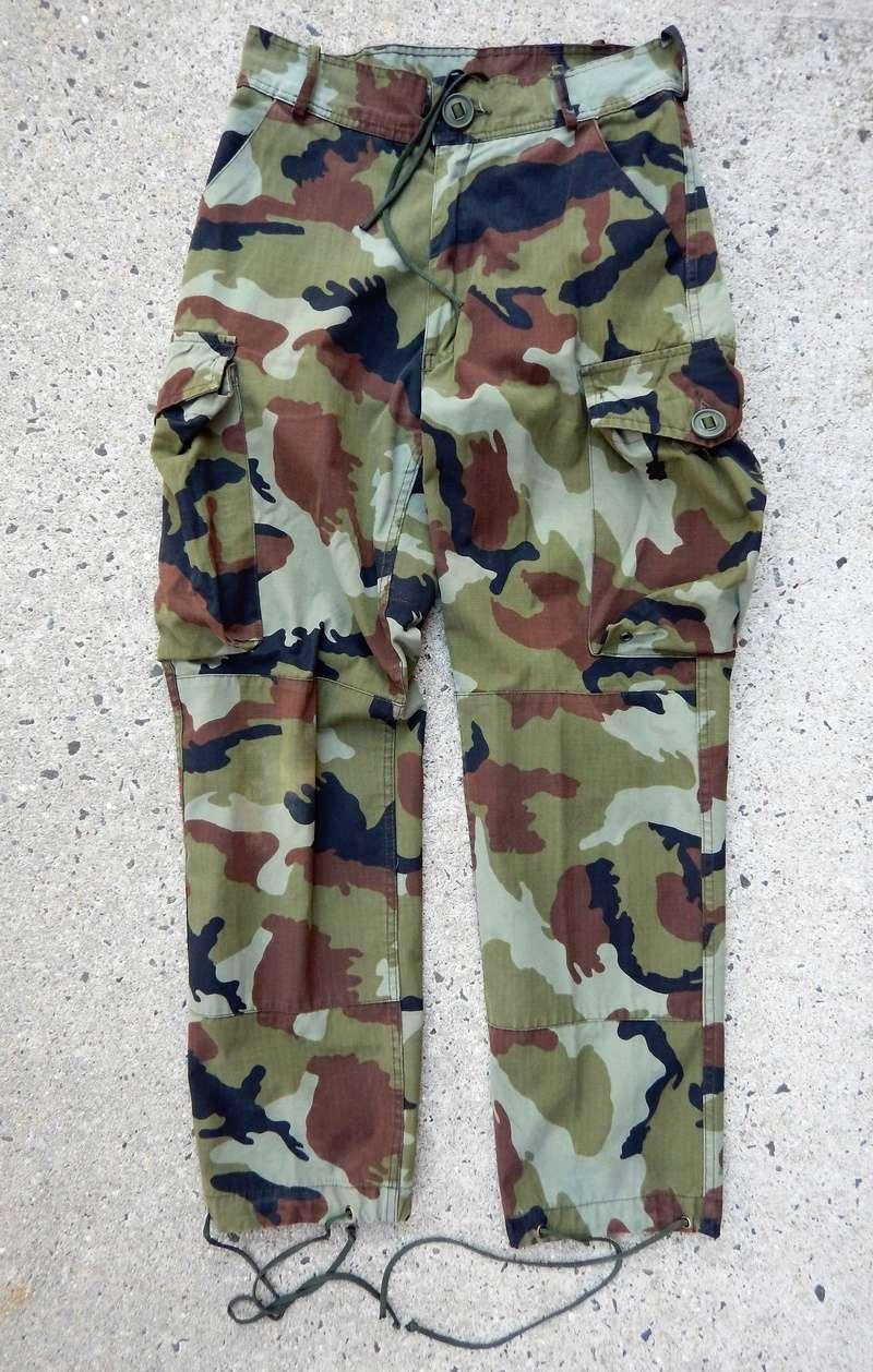 Temperate paddyflage Dscn4615