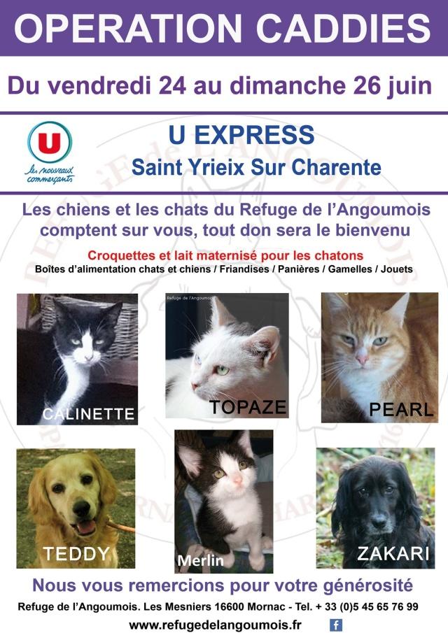 Opération caddies U Express Saint Yrieix du 24 au 26 juin 13403310