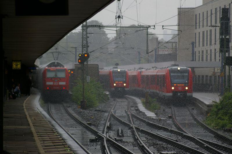 Was die Züge so bewegt ... - Seite 4 Imgp1525