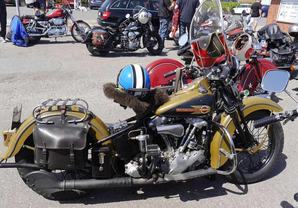 Les vieilles Harley Only (ante 84) du Forum Passion-Harley - Page 21 78857010