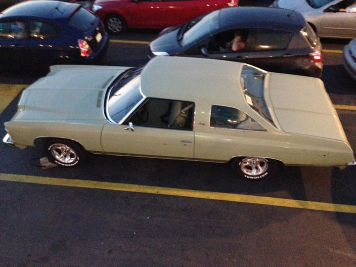 impala 74 Impala11