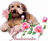 Joyeux anniversaire Mido Thcapz10