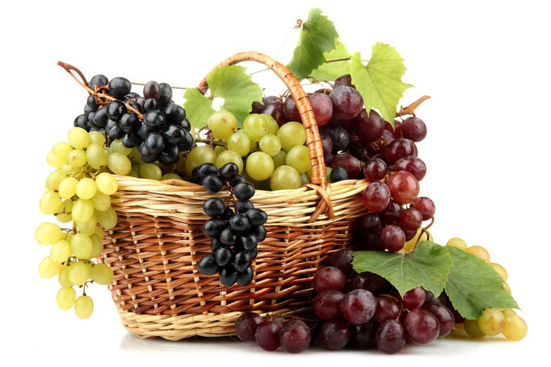 Cure de raisins 1109