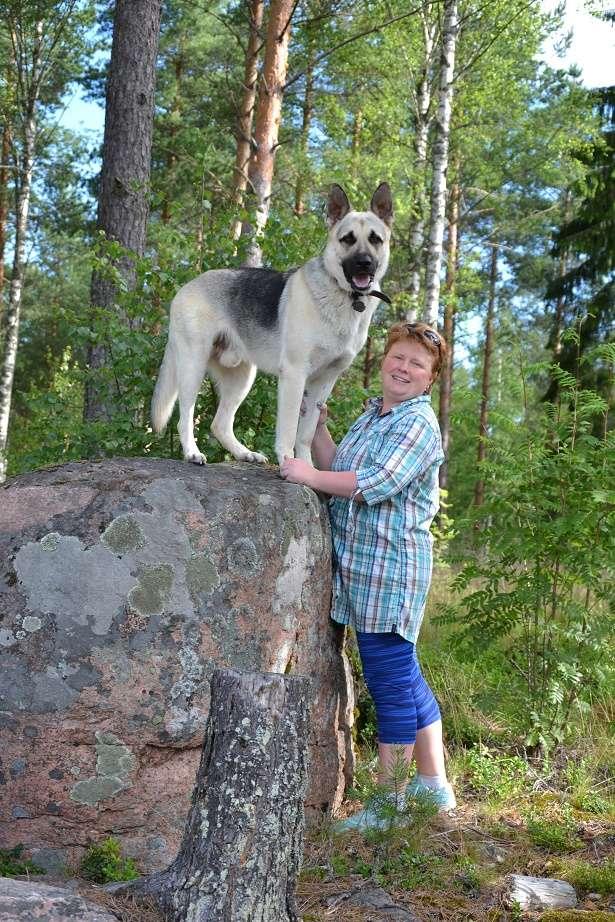"SCANDINFVIAN SUMMER ""DOG SHOW СACIB CAC""  ""MOHOPORODNAY VEO""Чемпион Швеции Dsc_4310"