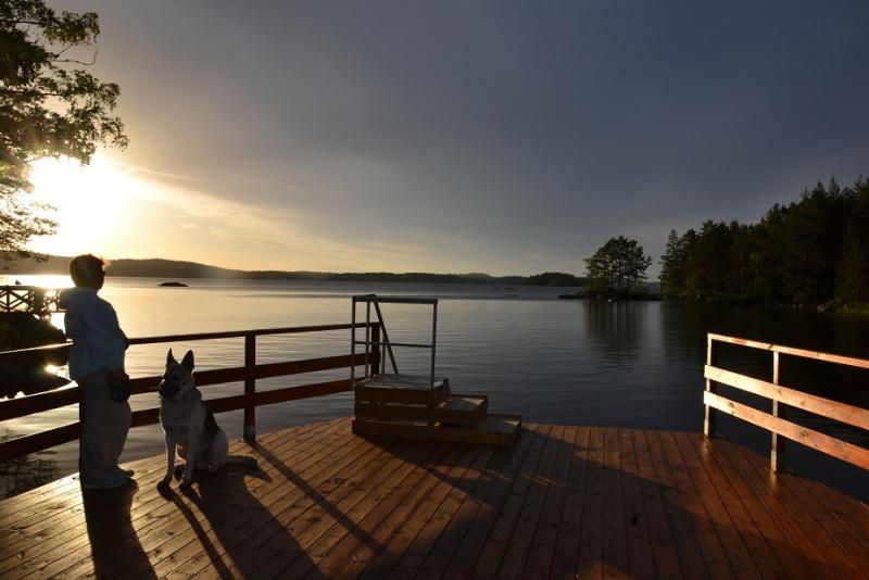 "SCANDINFVIAN SUMMER ""DOG SHOW СACIB CAC""  ""MOHOPORODNAY VEO""Чемпион Швеции Dsc_4619"