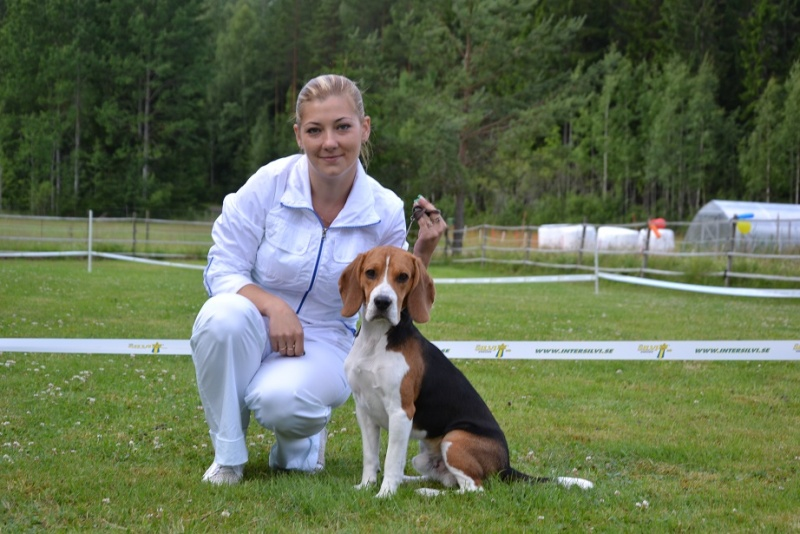 "SCANDINFVIAN SUMMER ""DOG SHOW СACIB CAC""  ""MOHOPORODNAY VEO""Чемпион Швеции Dsc_4712"