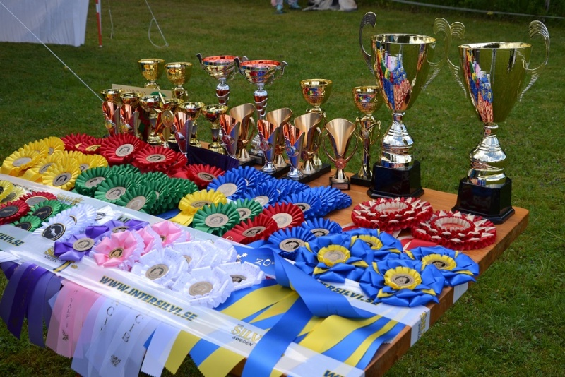 "SCANDINFVIAN SUMMER ""DOG SHOW СACIB CAC""  ""MOHOPORODNAY VEO""Чемпион Швеции Dsc_4714"