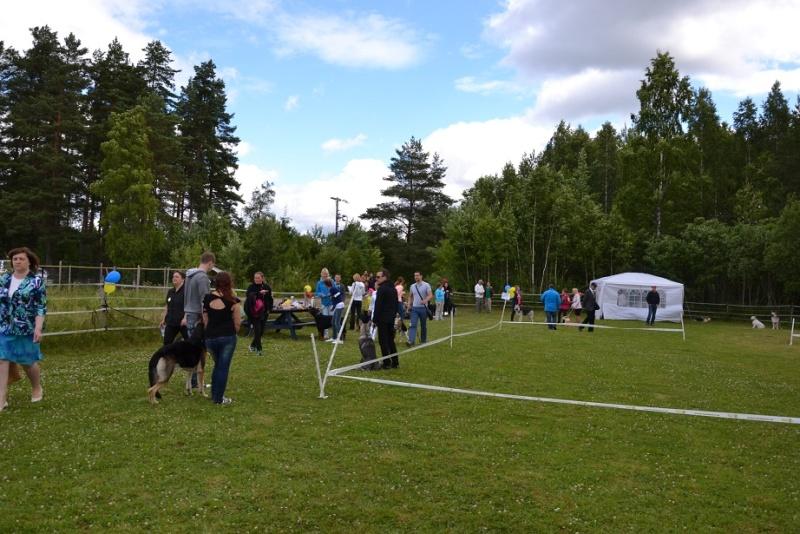 "SCANDINFVIAN SUMMER ""DOG SHOW СACIB CAC""  ""MOHOPORODNAY VEO""Чемпион Швеции Dsc_4718"