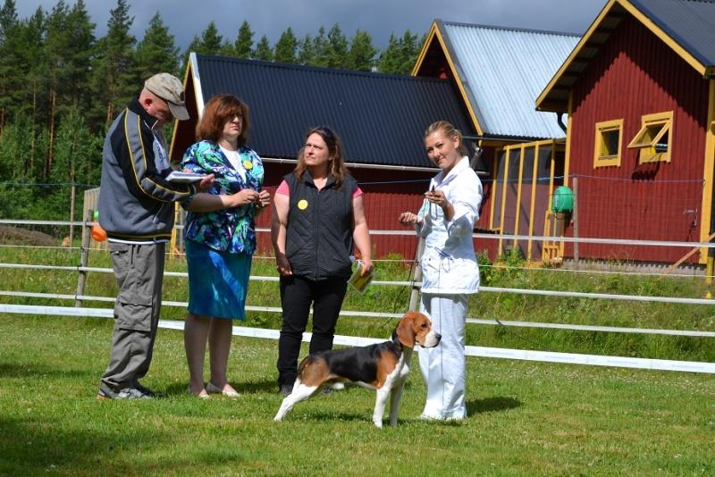 "SCANDINFVIAN SUMMER ""DOG SHOW СACIB CAC""  ""MOHOPORODNAY VEO""Чемпион Швеции Dsc_4812"