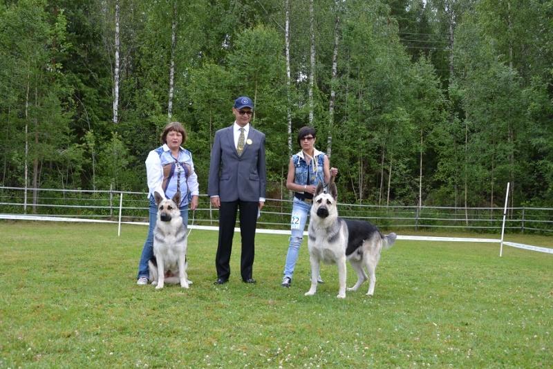 "SCANDINFVIAN SUMMER ""DOG SHOW СACIB CAC""  ""MOHOPORODNAY VEO""Чемпион Швеции Dsc_5412"