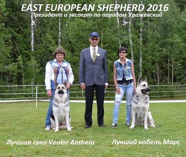 "SCANDINFVIAN SUMMER ""DOG SHOW СACIB CAC""  ""MOHOPORODNAY VEO""Чемпион Швеции Dsc_5413"