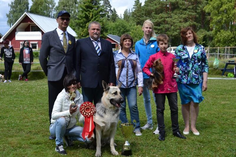 "SCANDINFVIAN SUMMER ""DOG SHOW СACIB CAC""  ""MOHOPORODNAY VEO""Чемпион Швеции Dsc_5710"