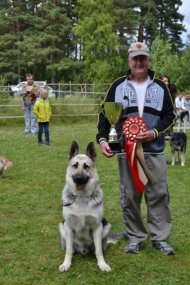 "SCANDINFVIAN SUMMER ""DOG SHOW СACIB CAC""  ""MOHOPORODNAY VEO""Чемпион Швеции Dsc_5720"