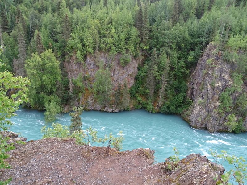 Alaska: Péninsule de Kenaï Dsc05823
