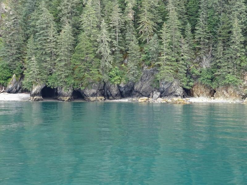 Alaska: Seward Dsc06115