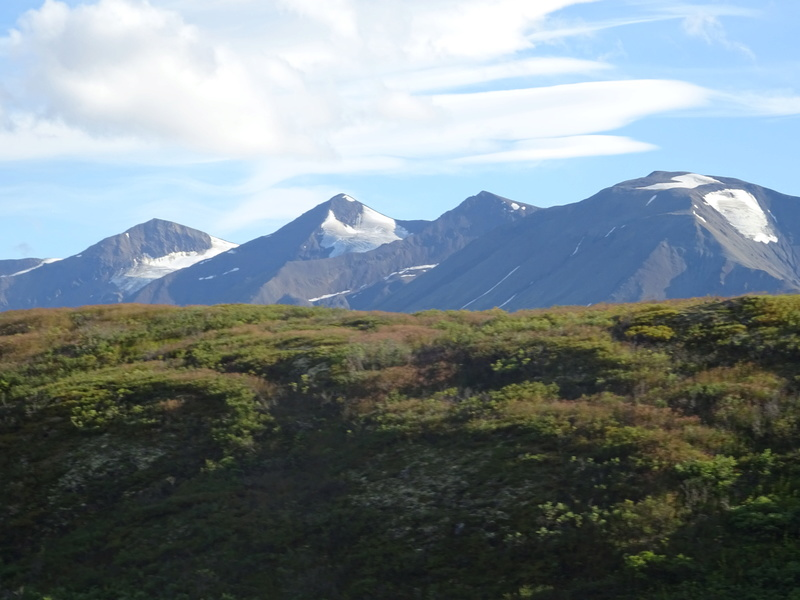 Alaska: Haines Road Dsc06913