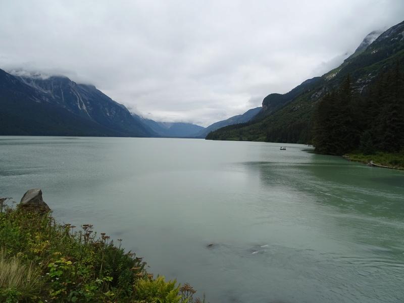 Alaska: Haines grizzly à la pêche Dsc07118