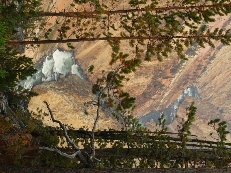 Yellowstone Dsc09110