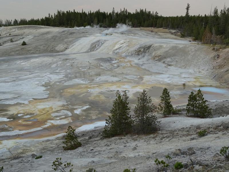 Yellowstone Dsc09111