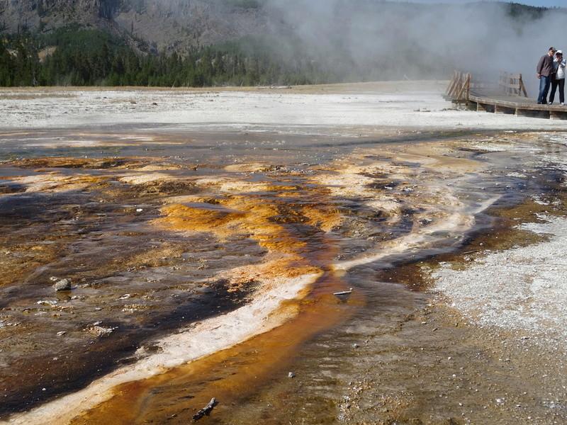 Yellowstone Dsc09510